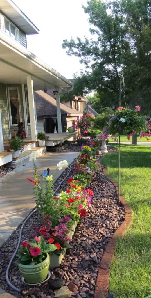 Rain barrels maintain this march of flowers in front of this Maplewood home.