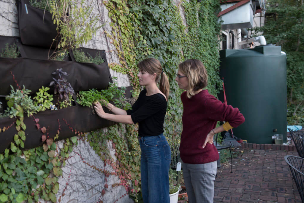 Maurer and Faust check the growth of herbs donated by St. Thomas University.